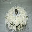 pelamin hantaran hall/table/room deco bunga telur hand bouquet arch red carpet