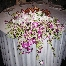 Aszreen Aziz A Wedding Gift