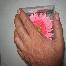 Hantaran Fresh Flower
