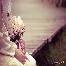 Jurugambar, photographer, perkahwinan, wedding, nikah, sanding, resepsi, bertandang, outdoor