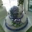 3n Cakes