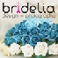 Bridelia Graphic   &   Photography