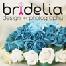 Bridelia Graphic & Photography