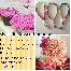mini tasbih,bunga telur,bunga tangan,keychain, brooches