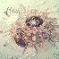 Bunga Tangan, Handbouquet, Centerpiece,