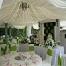 Luvliqa Canopy   &   Catering