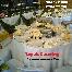 Catering Perkahwinan - RM8.80