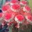 Bunga Telur Tisu/bunga Telur Crepe