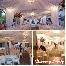 Chiavary , canopy , kanopi , deco , dekorasi , kerusi