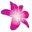 Bunga hiasan, doorgift, hantaran, bunga telur