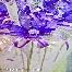bunga pahar/bunga telor