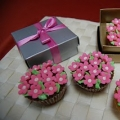 Szcutesweet Cup Cakes & Cakes