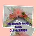 My Miracle Touch