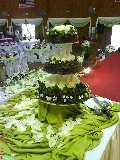 Dlc Catering & Event Services