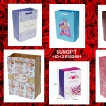 Sungift Paper Bags/goodies Bags